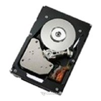 Hard drives (HDD) Hitachi 81Y9730
